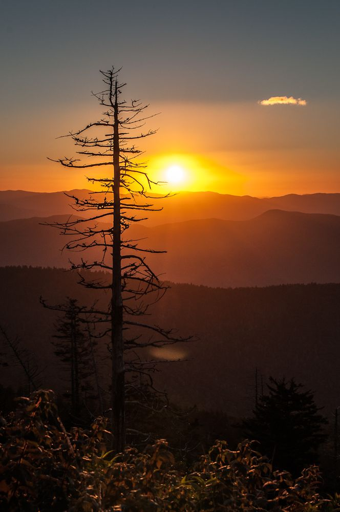 Mountain Sunrise  Never trust your LCD display on your camera. I was looking at all the photos I got during our recent trip to Clingmans Dome in the Great Smoky Mountain National Park and I was not happy with any of them. But once I imported them into my PC, boy was I ever wrong. Here is one of the shots from that trip. I have several more to share later too.