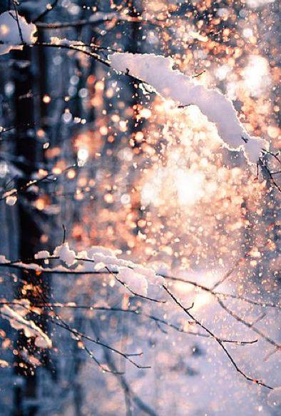 Du är en snöflinga. Beskriv hur en vinterdag är för dig! Beskriv ett vinterlandskap.