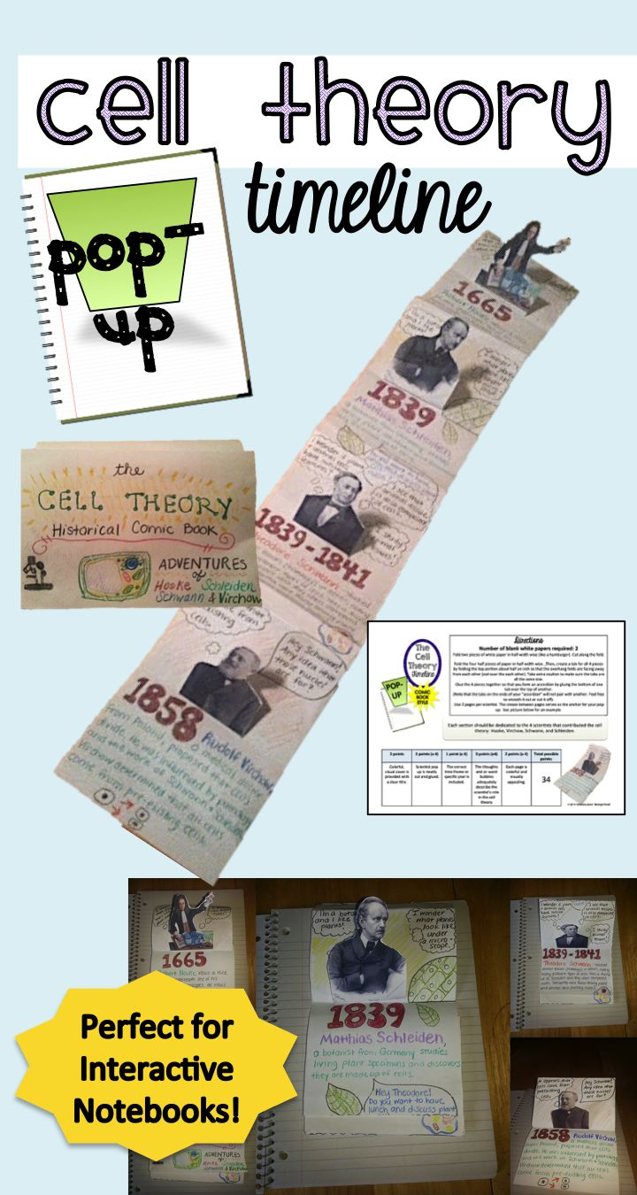 28 best science cells basic unit of life images on pinterest cell interactive notebook cell theory pop up timeline robcynllc Images