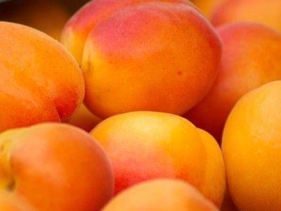 Свежие фрукты спасут от диабета   Новое исследование развеивает опасения по поводу того, что ежедневное употребление в пищу большого количества фруктов может быть опасно из-за высокого содержания в них глюкозы и фруктозы. Напротив, как уверяют ученые из Оксфордского университета, они способны сократить риск развития диабета. Фрукты спасут от диабета, говорят ученые.  Специалисты открыли, что фрукты не повышают уровень сахара в крови, вероятно, так как глюкоза и фруктоза из плодов…