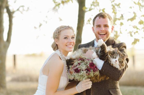 10 Fotos para provar que gatos podem participar do seu casamento