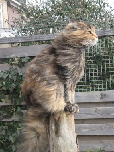 I love the feel of the wind in my hair…