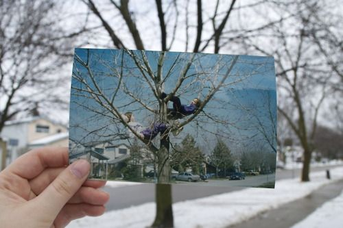 Dear Photograph,  Feeling invisible, hiding way up in it's branches, we shared so many little girl secrets. I wish the city hadn't cut   down it's lower branch, now it's imposssible to climb. They will never know how sad we all felt that day…it was so much more than just a tree.  Love, The Girls