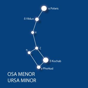 12 constelaciones para localizar a simple vista en el cielo nocturno: Osa Menor (Ursa Minor)