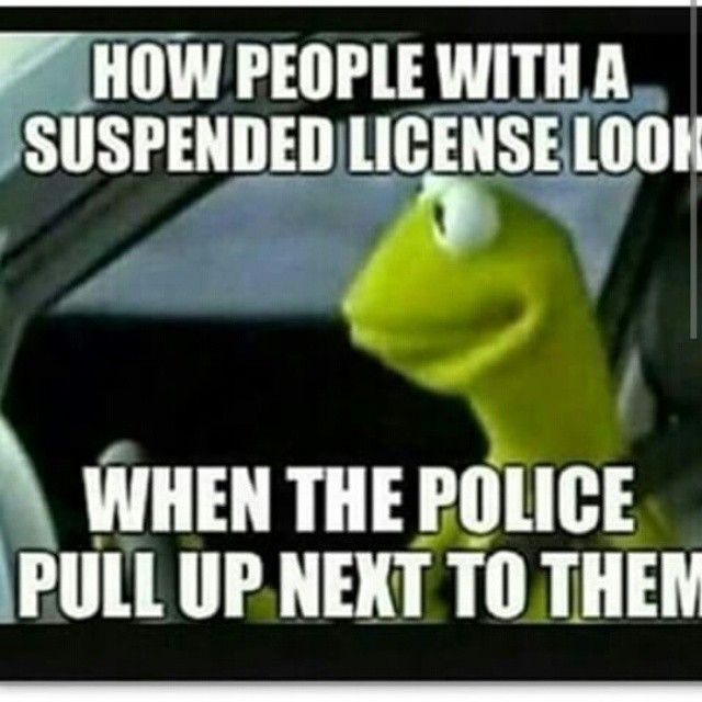 How people with a suspended license look when...