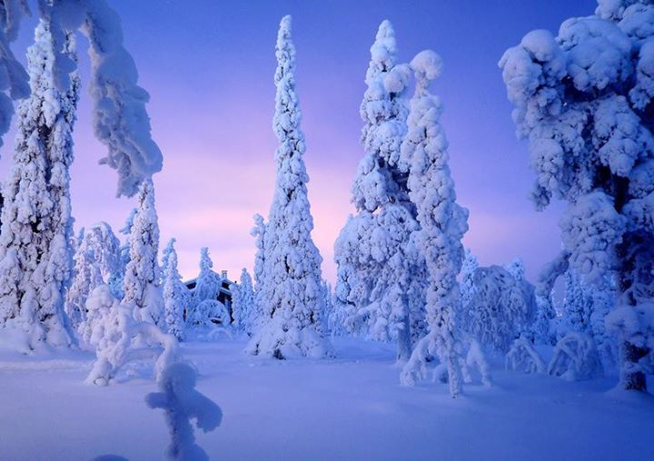 Ya huele a nieve en el Hemisferio Norte Prepara tu cámara de fotos! http://ift.tt/11PFDtT