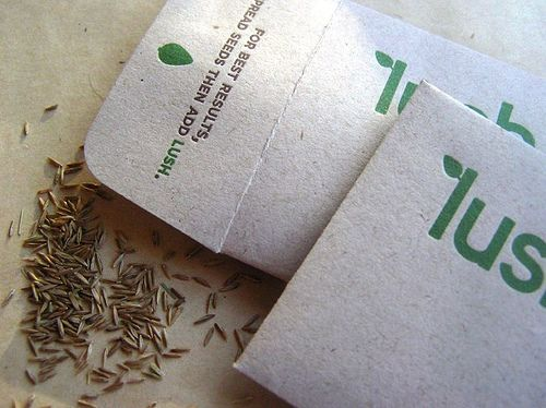 14 best eco friendly businesses images on pinterest green ecofriendly business cards reheart Gallery