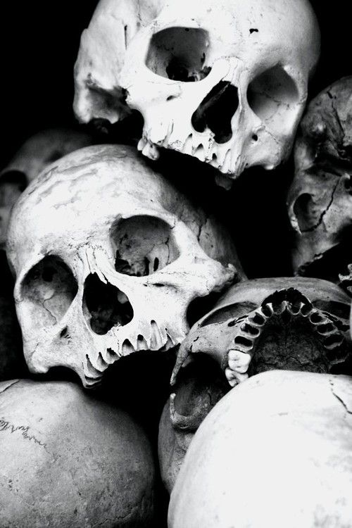 skulls | bones | the human condition | life | death | spooky | black  white | a bundle of bones