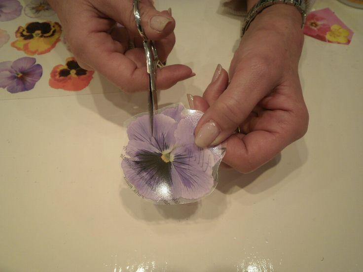 Tutorial per la preparazione dei fiori con la tecnica del sospeso trasparente
