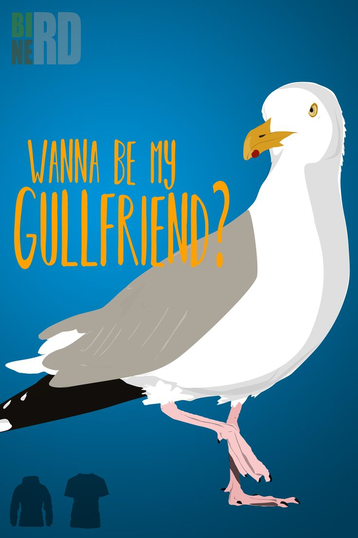 Wanna be my gullfriend, show the Bird Nerd in you with this funny bird pun tee shirt
