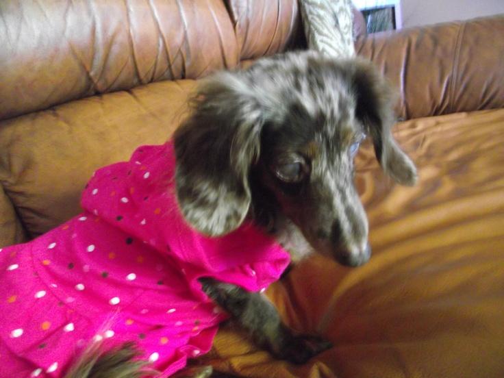 Pink Hoddie-Dress w/Polka dots