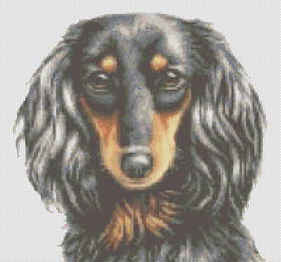 Counted Cross Stitch Pattern Long Haired Dachshund Dog cs0831 | TerryEmelia - Patterns on ArtFire