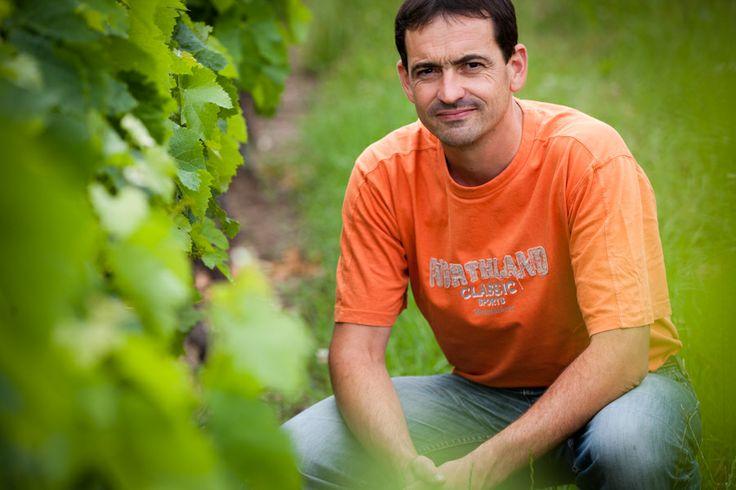 Vignobles Morandière