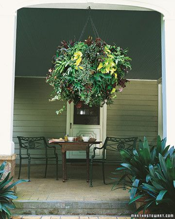 Made of tropical foliage plants typically grown indoors, this spherical beauty includes moon valley pilea, begonias, pothos vine, staghorn fern, a variety of other ferns, and philodendron. The effect is complex but easy to re-create. Simply choose a variety of textures and colors, and densely plant them in a steel-ball form. Offset the expense by taking the ball apart before frost, potting up the plants, and enjoying them indoors through winter.