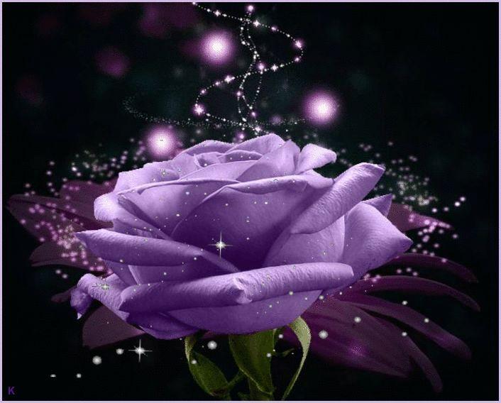 Бобром для, анимированные картинки розы