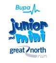Great North Run Junior and Mini run events