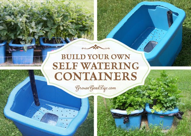 Self watering containers are an enclosed growing system that decreases moisture evaporation and offers a consistent water supply to your plants.