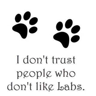 it's not a matter of trust, I just don't like 'em.
