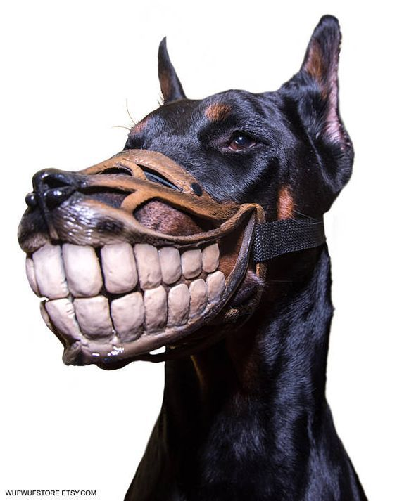 Looking For A One Of Kind Dog Muzzle How About This Here Funny Black And White In Color Hand Painted Features