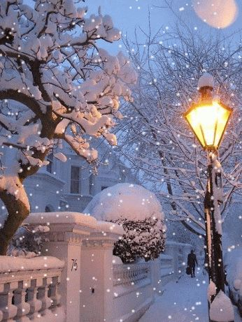 ❄ Winter Wonderland ❄ this is a GIF - Animated Pin ❄ Please click on the play button to view ❄