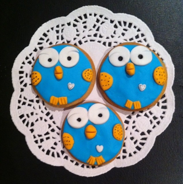 Hoot Cookies inspired by Giggle & Hoot show by Practically Perfect