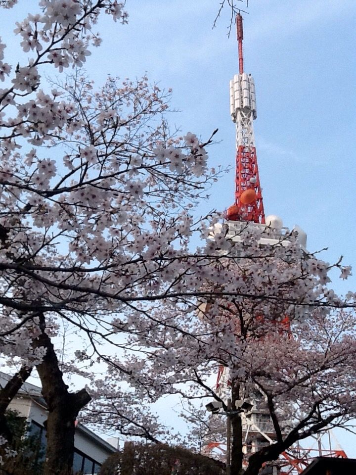 The Tower in Spring....