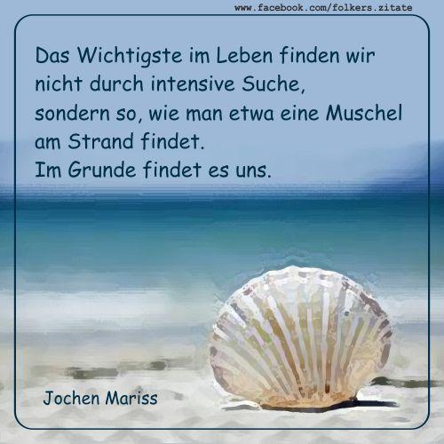 Das Wichtigste im Leben finden wir nicht durch intensive Suche, sondern so, wie man etwa eine Muschel am Strand findet. Im Grunde findet es uns. (Jochen Mariss)