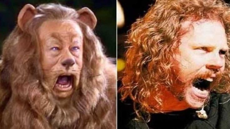 18 best images about People who resemble animals on ...