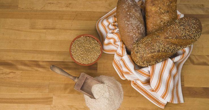 ¿Es bueno comer pan de trigo integral en una dieta?. Los alimentos de trigo integral, grano entero y salvado, como los panes de trigo integral, son algunos de los alimentos más beneficiosos que puedes comer en una dieta. Debes disminuir tu consumo de calorías para perder peso, pero cuando tu cuerpo se ha acostumbrado a una ingesta más grande de calorías, tiendes a tener hambre y querer comer más. El ...