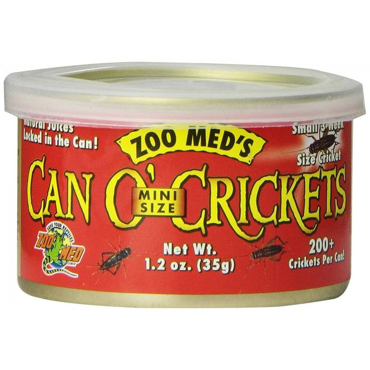 Zoo Med Mini Can O' Crickets is the latest in reptile nutrition and convenience. Mini: Small size crickets. Ideal for most small lizards, turtles, fish, birds and small animals.
