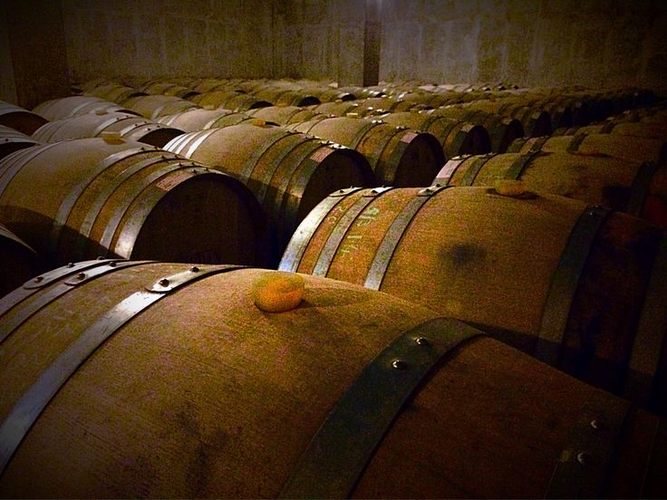 Taking it one barrel at a time ;) #wineSaturday #wine #knowledge