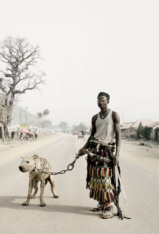Photography: Unknown   A Hyena relocation or pet?