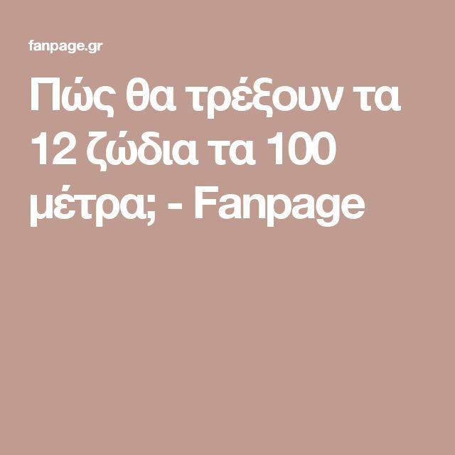 Πώς θα τρέξουν τα 12 ζώδια τα 100 μέτρα; - Fanpage