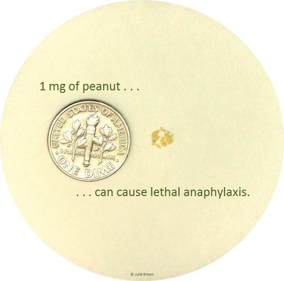 People with peanut allergy have died from as little as 1 mg of peanut, as shown here