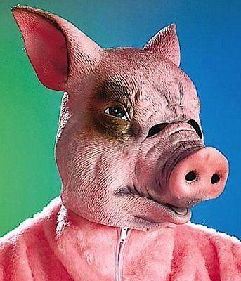 Tier-Maske Überziehmaske Schwein Karneval Tier Kostüm Fasching in Kleidung & Accessoires, Kostüme & Verkleidungen, Accessoires | eBay