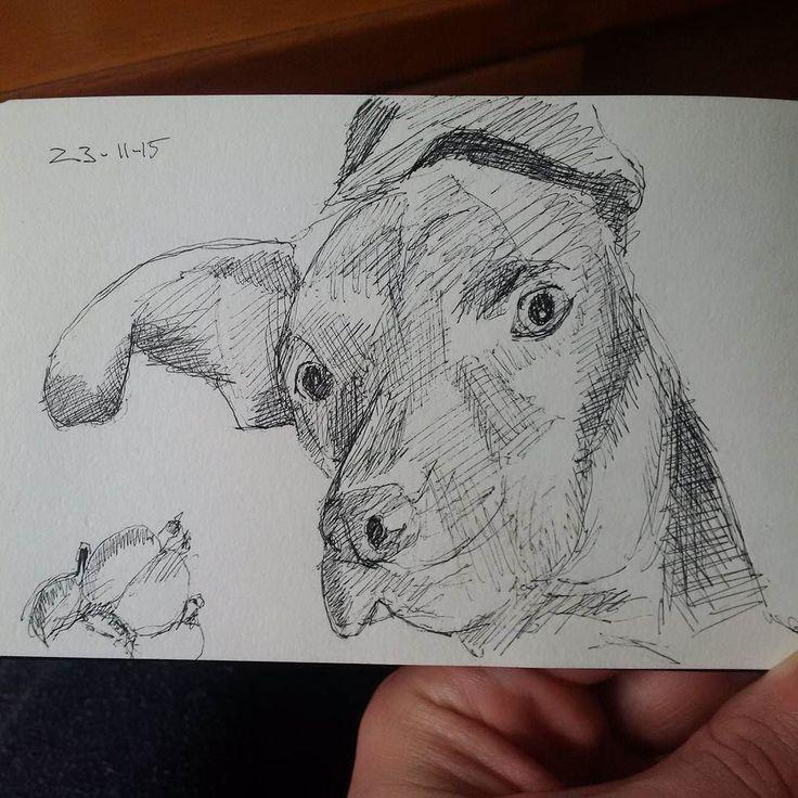 #silly #dog #sketch  #drawing #pen #dogs #drawmypet #doggie #pup #dogoftheday #dogstagram #dogsofinstagram #twitter
