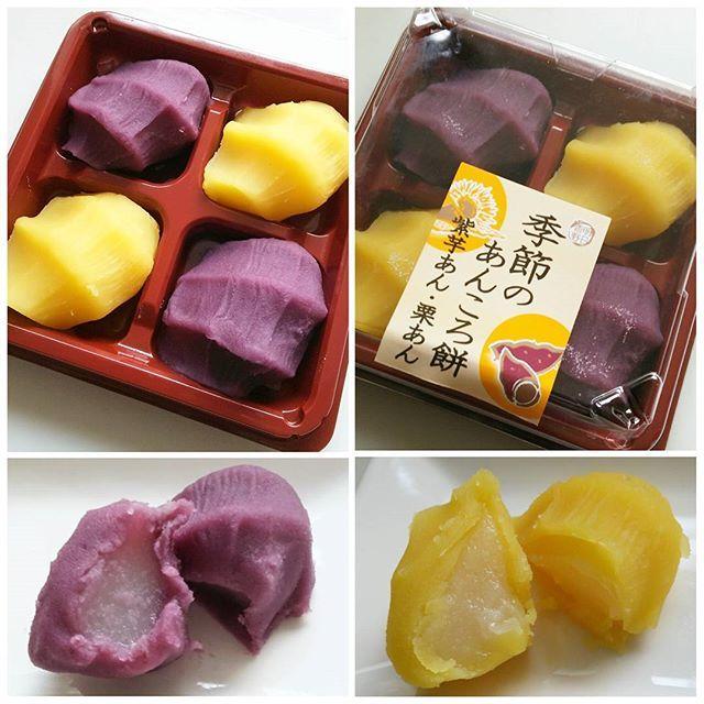 WEBSTA @ mashinoamu - ⭐2016年10月27日⭐⭐#今日のおやつ #季節のあんころ餅 #紫芋あん #栗あん ・⭐今日は#和菓子 の気分だったので、#あんころ餅 にしてみました😁⭐見た目が赤福みたい❤紫と黄色の色合いも綺麗✨あんこの中には#お餅 が入っててます⭐すごく美味しかったけど、ちっちゃすぎて物足りない(笑)おはぎサイズの大きいやつ作って欲しいです😂⭐#おやつ#おやつタイム#和生菓子#スーパー#和菓子コーナー#値下げ品#明日香野#明日香#あんこ#紫芋#栗#あんこたっぷり#餅少なめ#季節の和菓子