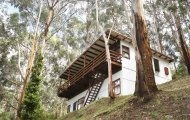 The Treehouse - holiday house rental available in Wye River. 2 bedrooms. Online Booking. Great Ocean Road Accommodation