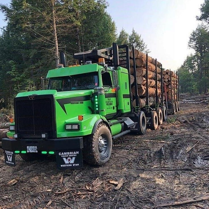Logging Trucks And More On Instagram How Are These For Some Custom Looking Trucks Thanks For The Pics Cody Lb R Big Rig Trucks Western Star Trucks Trucks