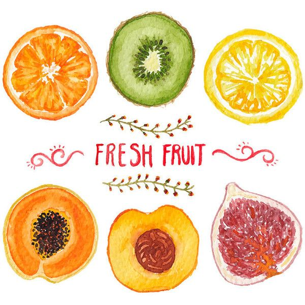 6 Watercolor Fruits Clipart, Hand painted, Vector Fruit, Food Clipart,... (16 RON) ❤ liked on Polyvore featuring home, home decor, backgrounds, filler, fruit home decor and handmade home decor