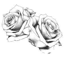 Bildergebnis für vorlage rosen tattoo