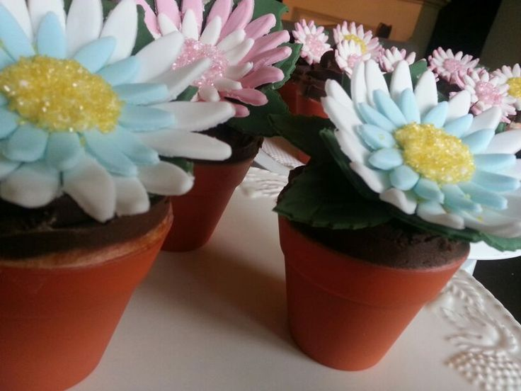 Garden themed - mini flower pot cakes