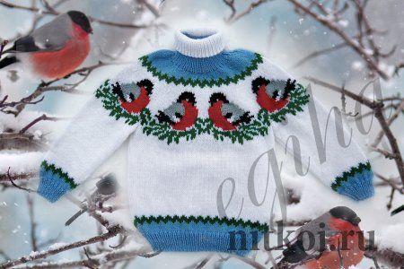 "Children's sweater ""bullfinches on snow"""
