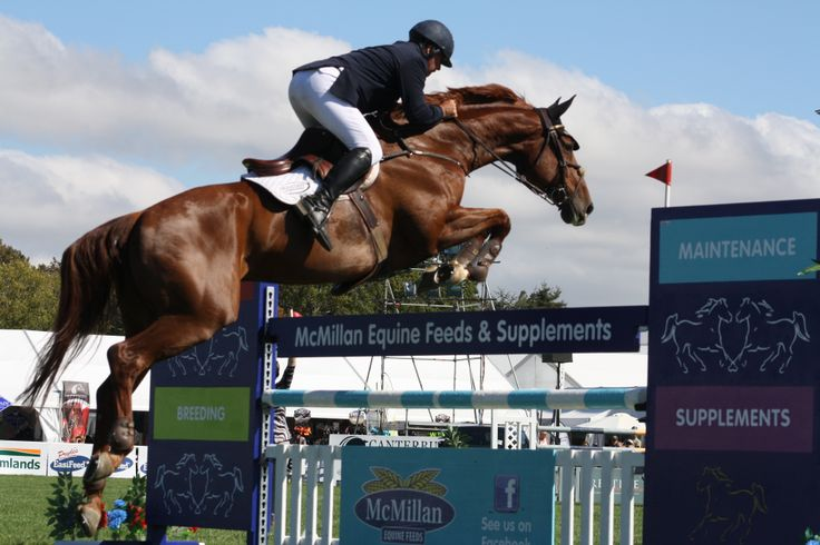 World Champion, Belgium's Phillipe le Jeune rode Katie McVean's Dunstan Kiwi Iron Mark to third place in the Norwood Gold Cup