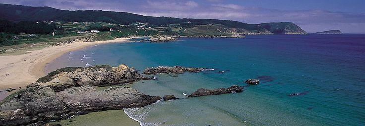 Pin en A costa de Galicia