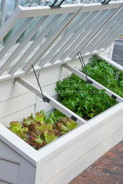 How to Use a Cold Frame to Grow Cold-tolerant Crops