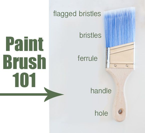 Paint brush 101 along with helpful tips