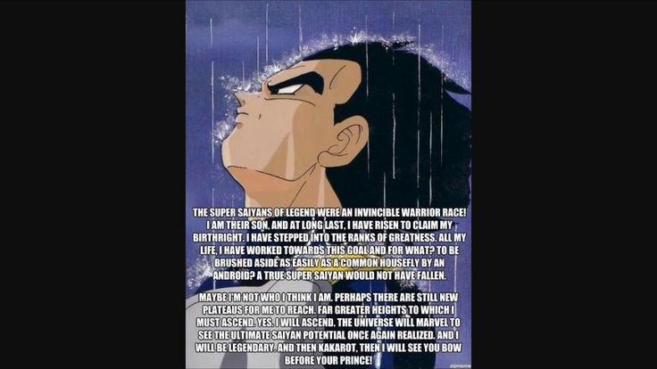 This is why Vegeta is the best