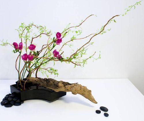 Alla base della composizione dell'ikebana sono sempre elementi organici disposti in modo da esprimere bellezza estetica e leggerezza