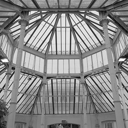 Material Matters: Glass #glass #london #kew #garden #greenhouse #green #house #palm #exotic #tree
